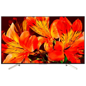Televizor Sony KD-55XF8596 RU3 Outlet